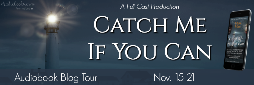 D) Catch Me If You Can Tour Banner 2
